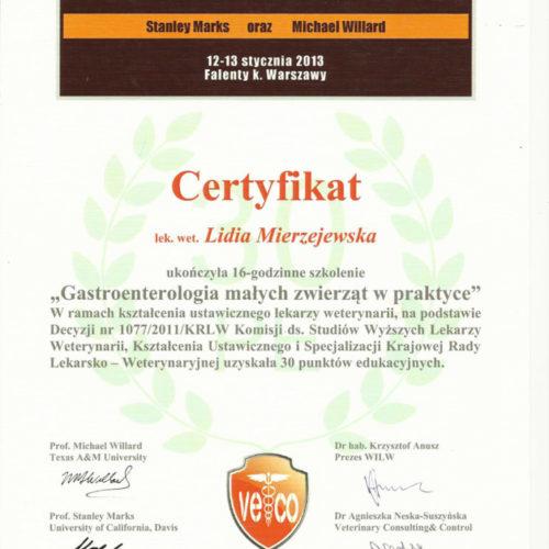 certyfikat-lm-01