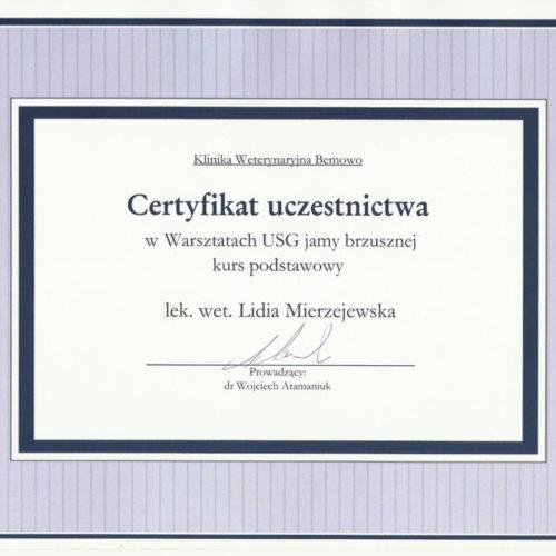 certyfikat-lm-04